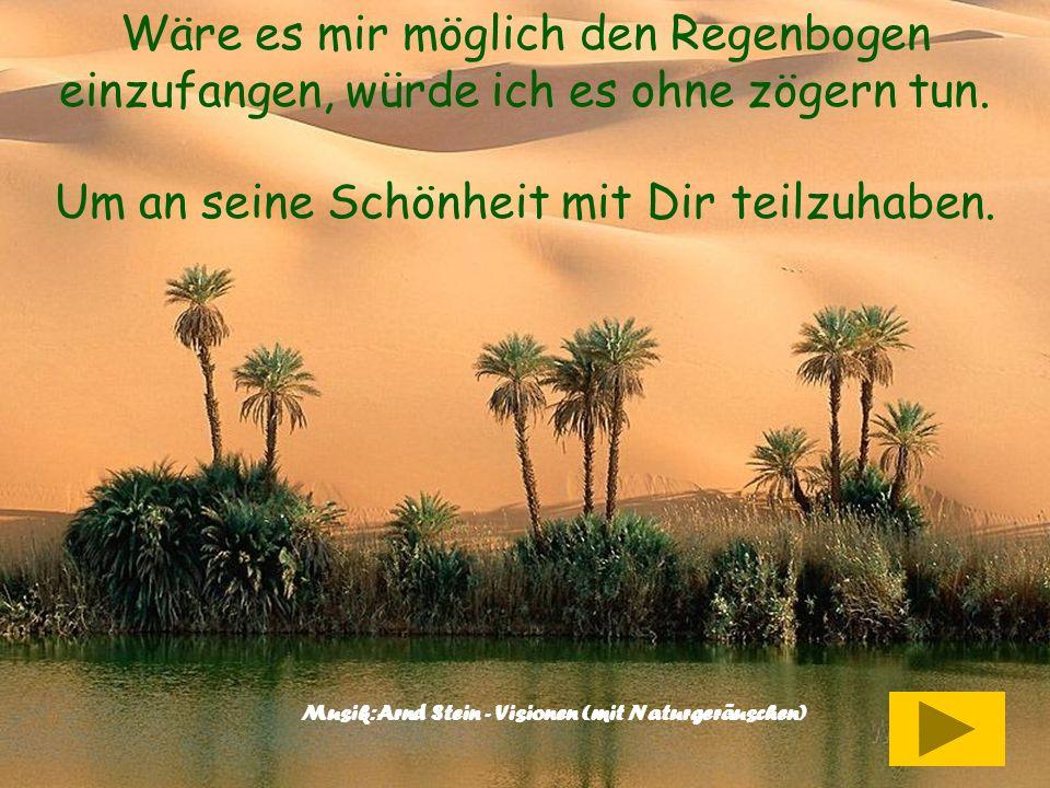 Musik:Arnd Stein - Visionen (mit Naturgeräuschen)