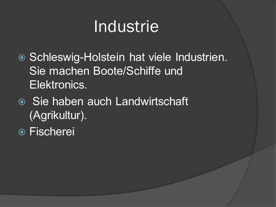 Industrie Schleswig-Holstein hat viele Industrien. Sie machen Boote/Schiffe und Elektronics. Sie haben auch Landwirtschaft (Agrikultur).