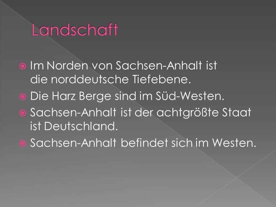 Landschaft Im Norden von Sachsen-Anhalt ist die norddeutsche Tiefebene. Die Harz Berge sind im Süd-Westen.