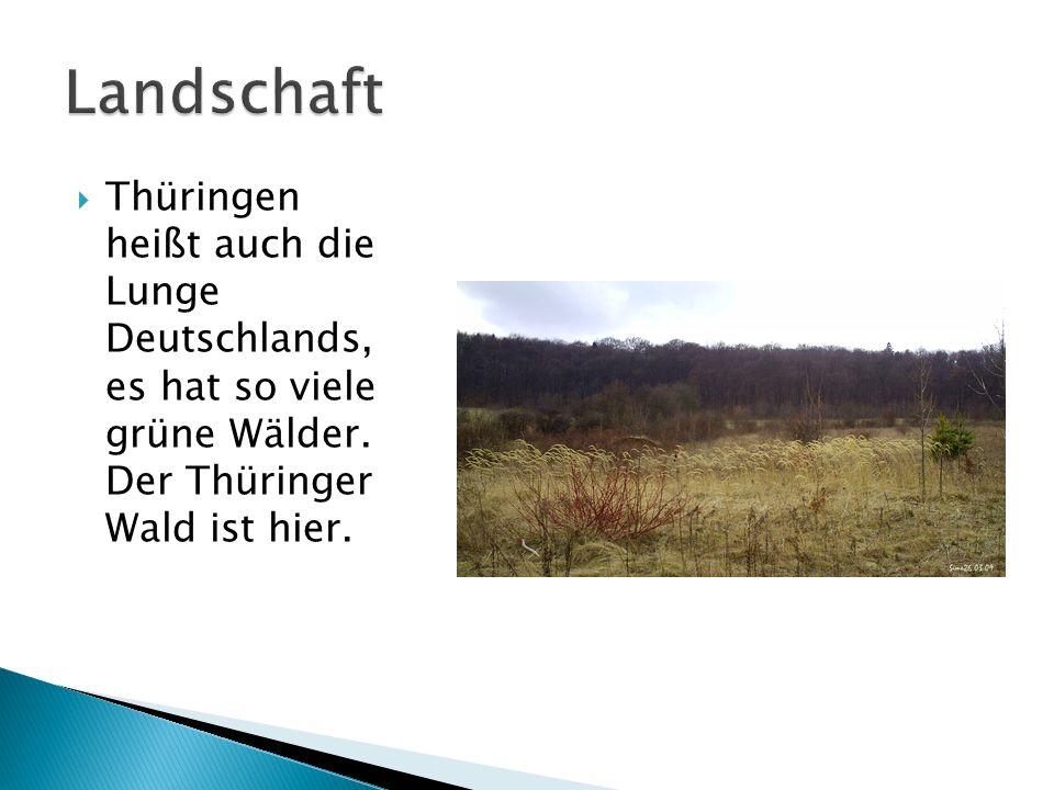 Landschaft Thüringen heißt auch die Lunge Deutschlands, es hat so viele grüne Wälder.