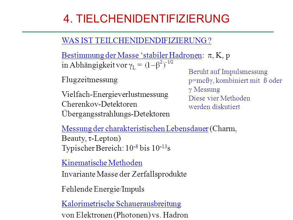 4. TIELCHENIDENTIFIZIERUNG