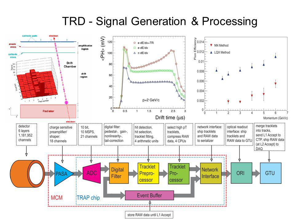 TRD - Signal Generation & Processing
