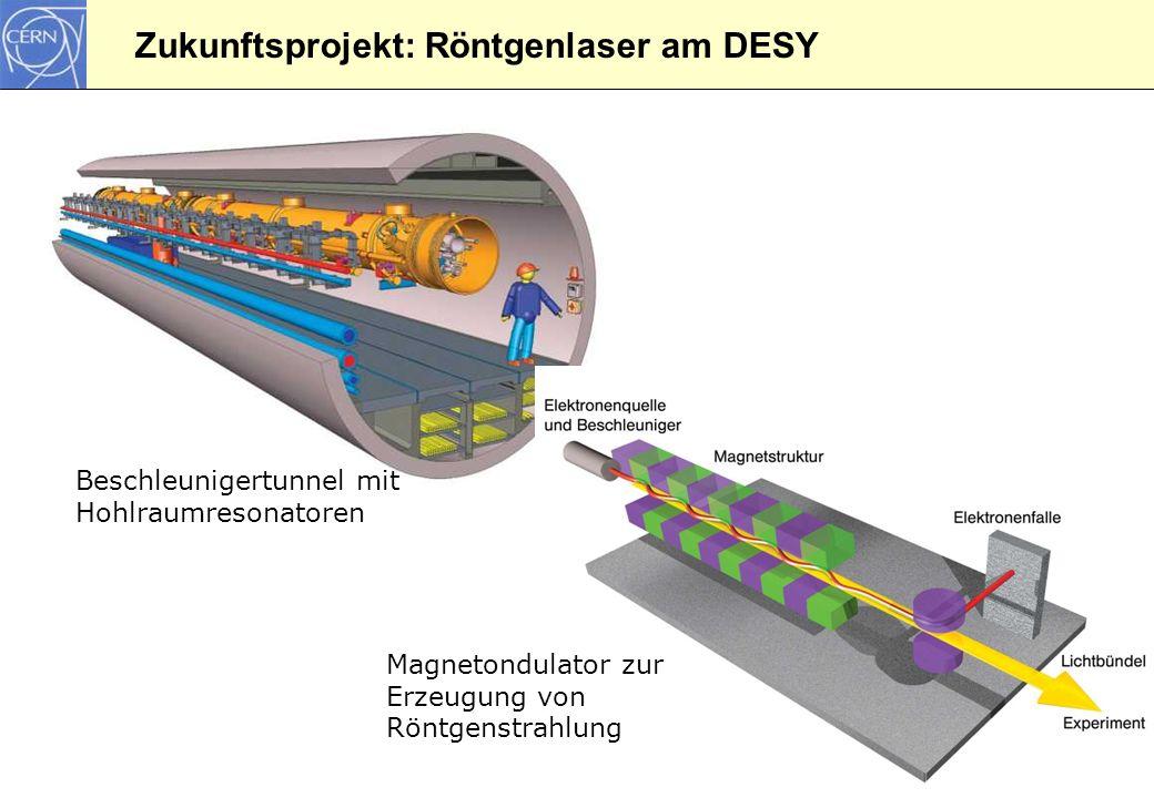 Zukunftsprojekt: Röntgenlaser am DESY