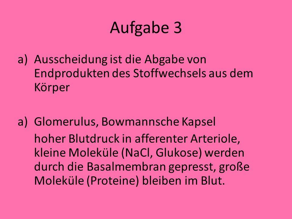 Aufgabe 3 Ausscheidung ist die Abgabe von Endprodukten des Stoffwechsels aus dem Körper. Glomerulus, Bowmannsche Kapsel.