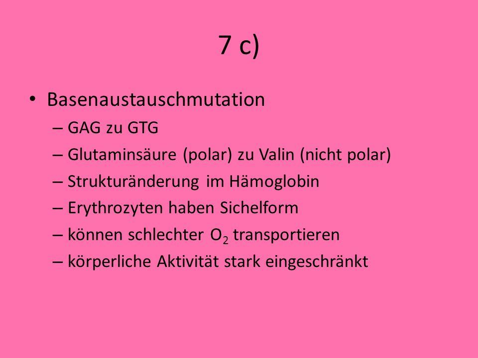 7 c) Basenaustauschmutation GAG zu GTG