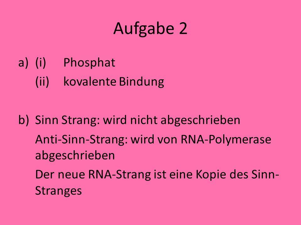Aufgabe 2 (i) Phosphat (ii) kovalente Bindung