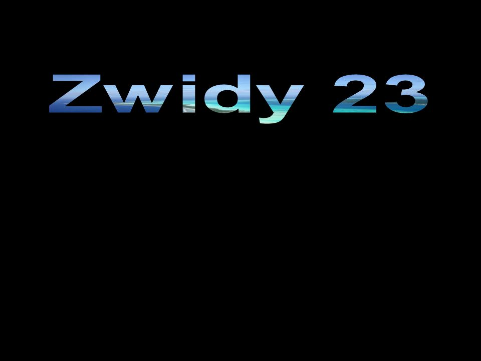 Zwidy 23
