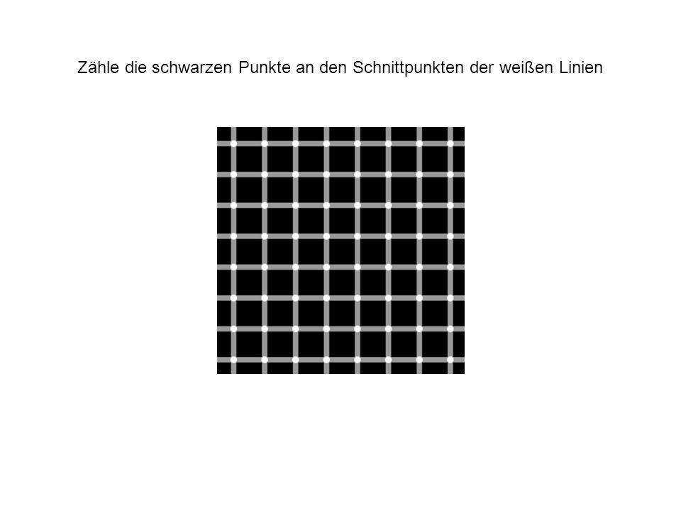 Zähle die schwarzen Punkte an den Schnittpunkten der weißen Linien