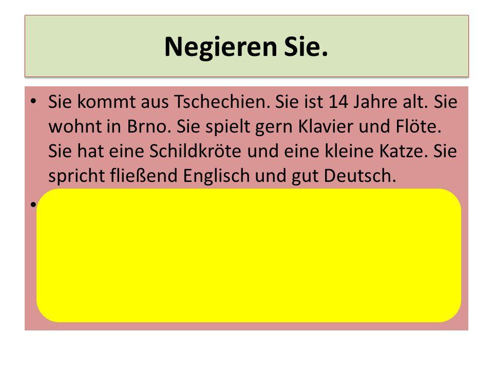 spricht nicht gut deutsch