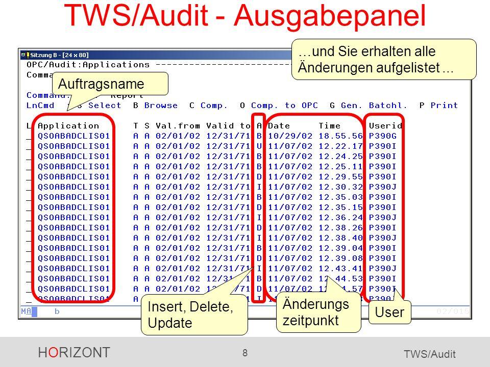 TWS/Audit - Ausgabepanel
