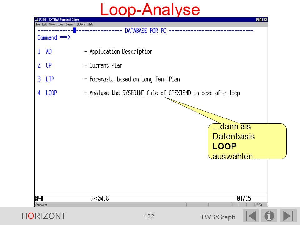 Loop-Analyse ...dann als Datenbasis LOOP auswählen... HORIZONT