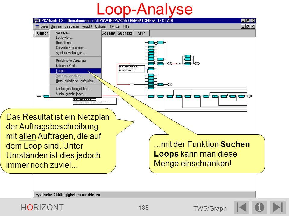 Loop-Analyse