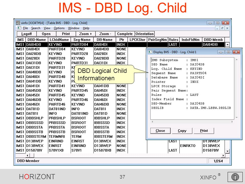 IMS - DBD Log. Child DBD Logical Child Informationen