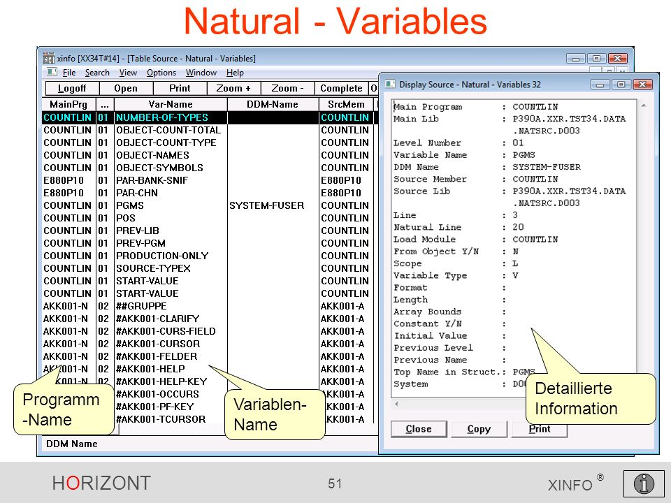Natural - Variables Detaillierte Information Programm-Name