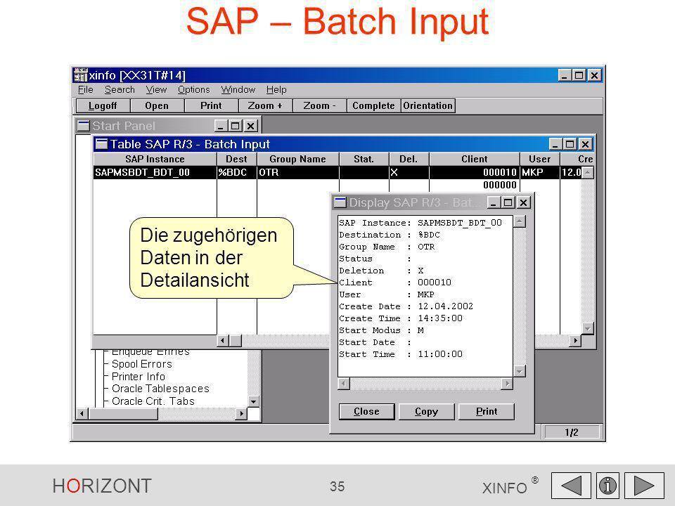 SAP – Batch Input Die zugehörigen Daten in der Detailansicht