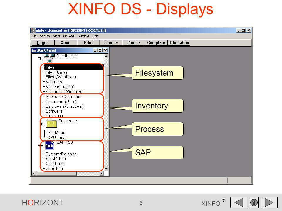XINFO DS - Displays Filesystem Inventory Process SAP