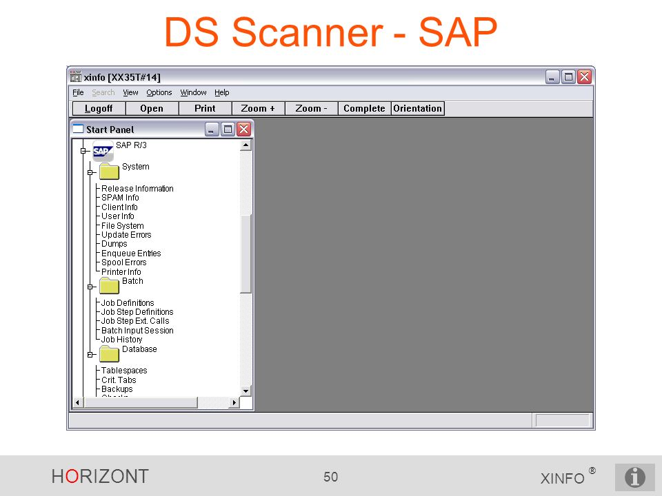 DS Scanner - SAP