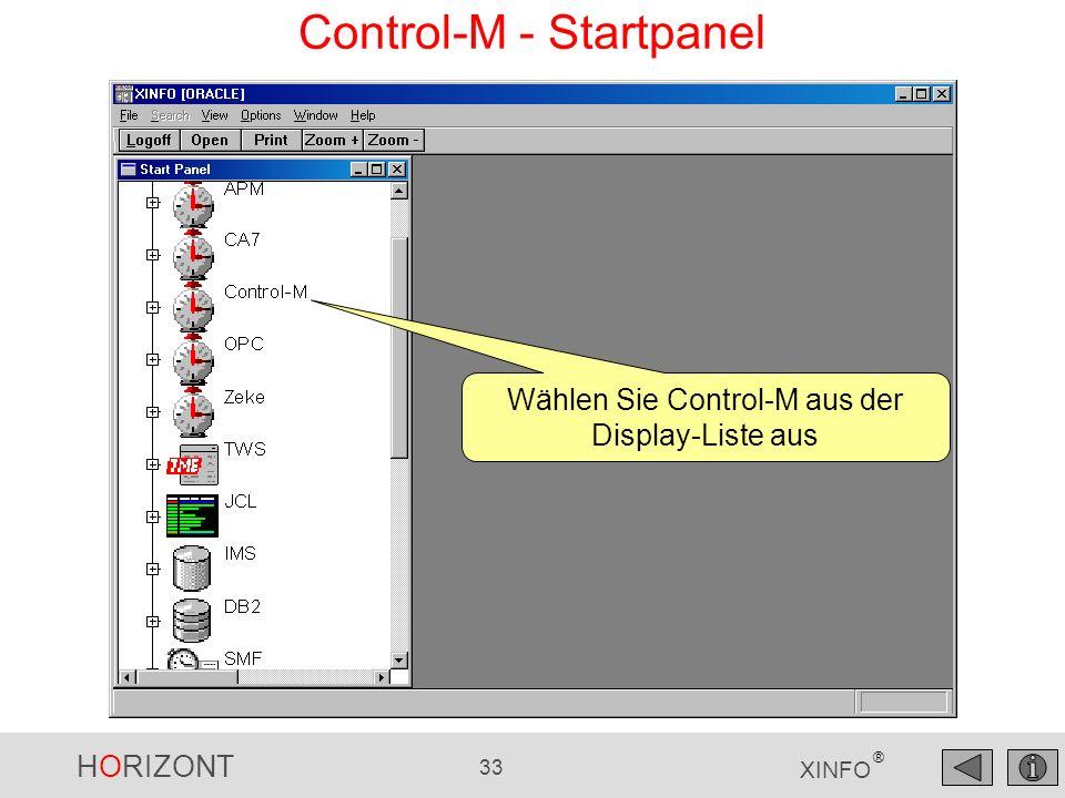 Control-M - Startpanel
