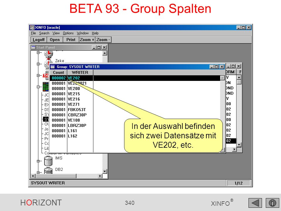 In der Auswahl befinden sich zwei Datensätze mit VE202, etc.