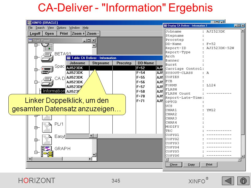 CA-Deliver - Information Ergebnis