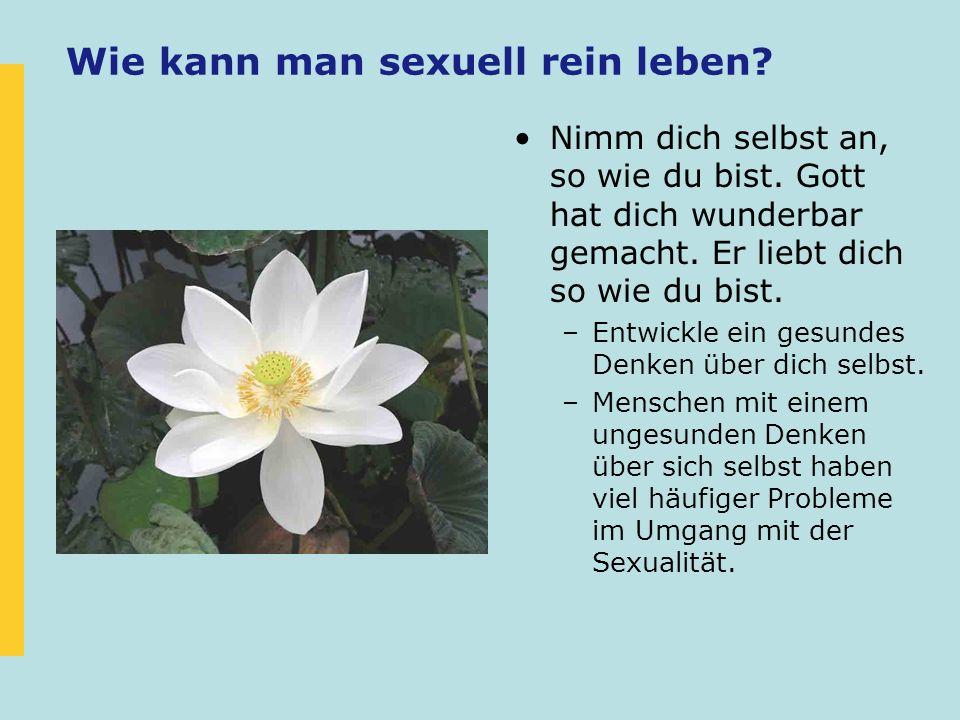 Wie kann man sexuell rein leben