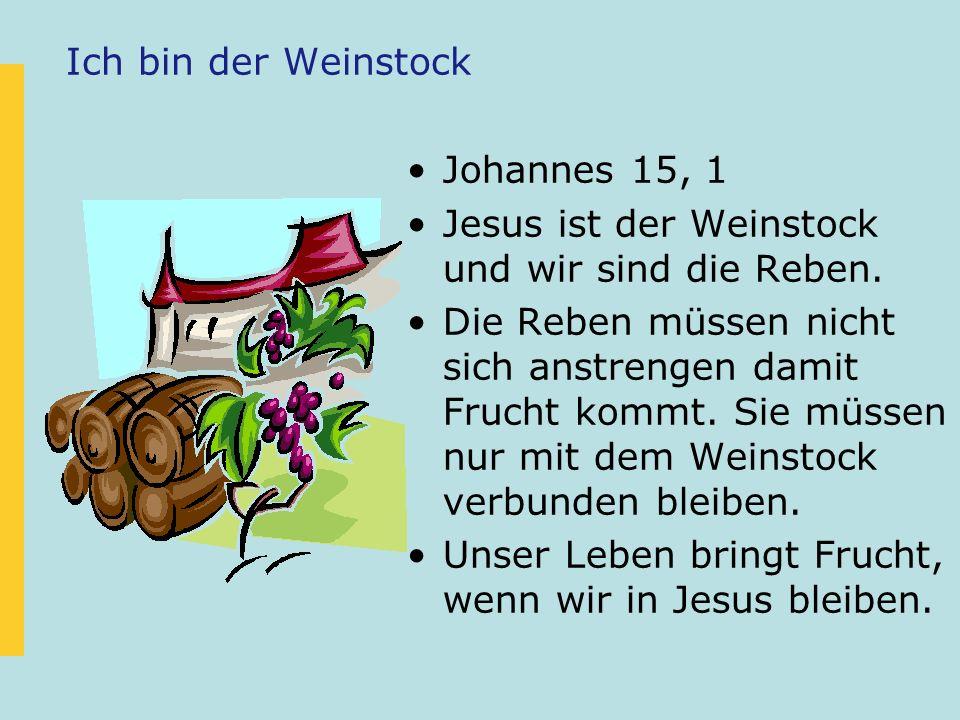 Ich bin der Weinstock Johannes 15, 1. Jesus ist der Weinstock und wir sind die Reben.