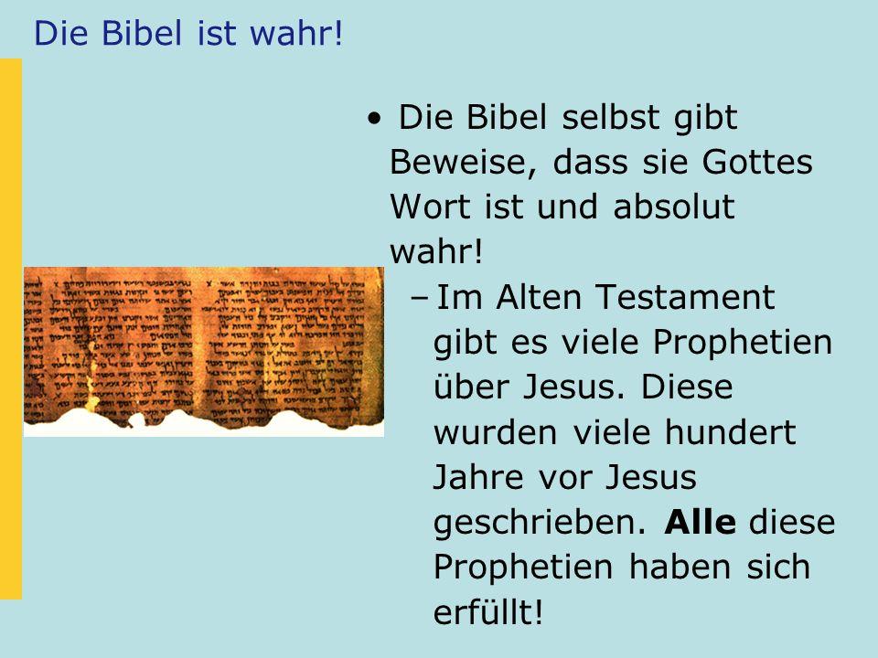Die Bibel ist wahr! Die Bibel selbst gibt. Beweise, dass sie Gottes. Wort ist und absolut. wahr!