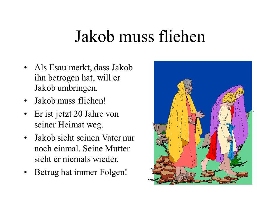 Jakob muss fliehen Als Esau merkt, dass Jakob ihn betrogen hat, will er Jakob umbringen. Jakob muss fliehen!