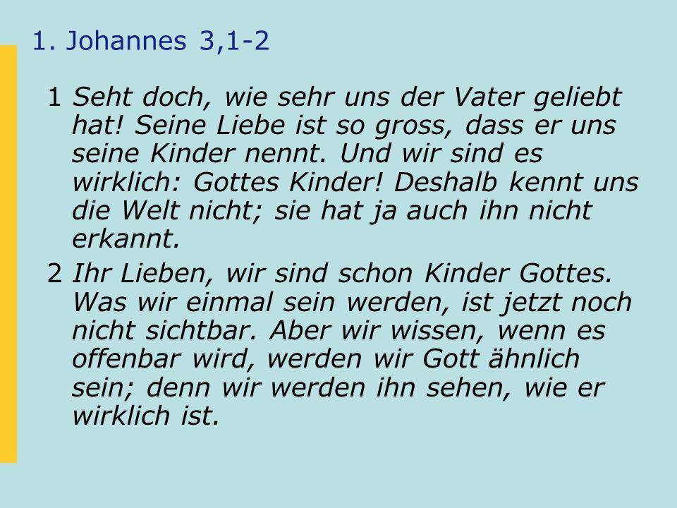 1. Johannes 3,1-2