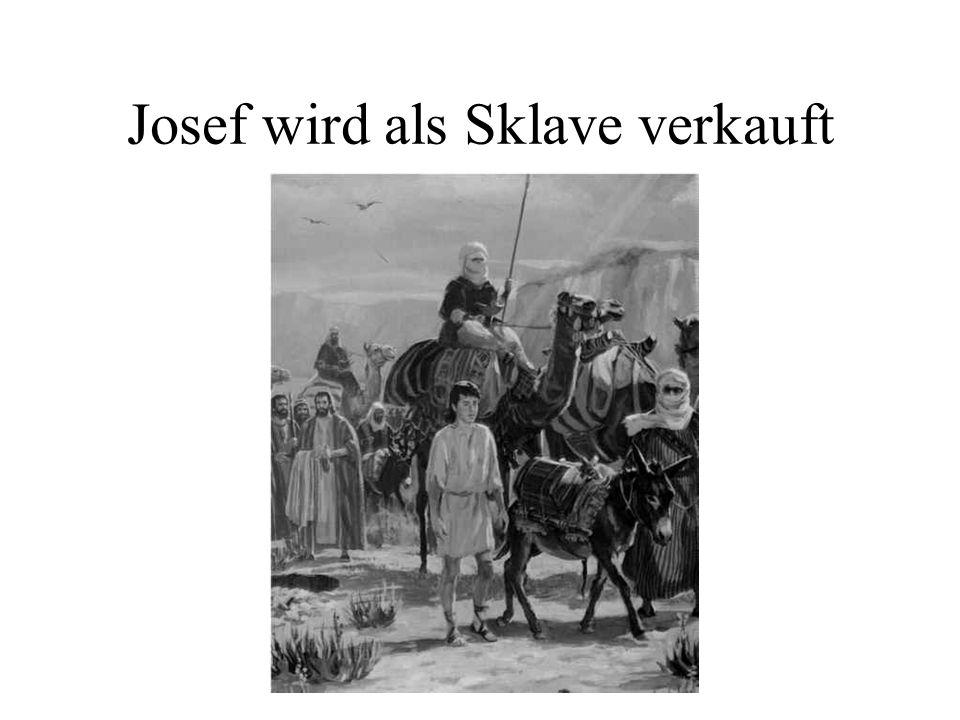 Josef wird als Sklave verkauft