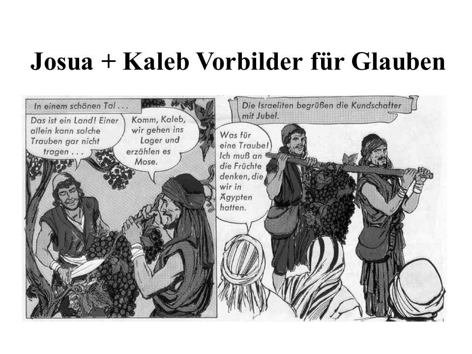 Josua + Kaleb Vorbilder für Glauben
