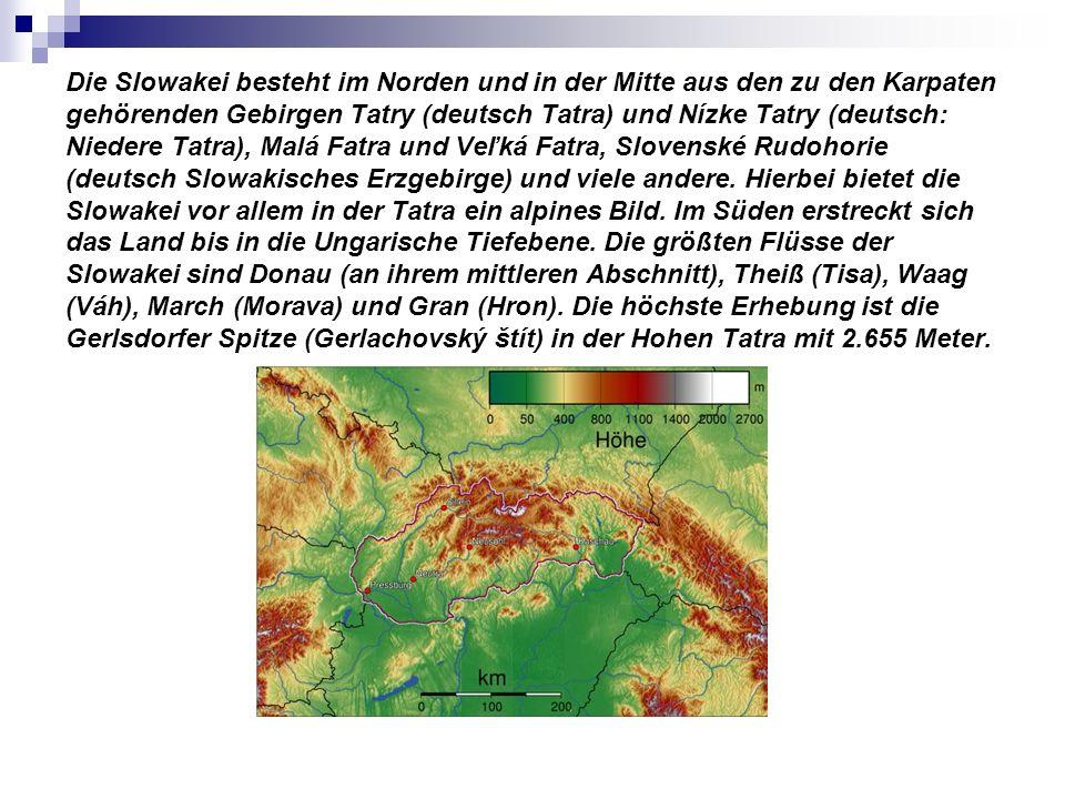 Die Slowakei besteht im Norden und in der Mitte aus den zu den Karpaten gehörenden Gebirgen Tatry (deutsch Tatra) und Nízke Tatry (deutsch: Niedere Tatra), Malá Fatra und Veľká Fatra, Slovenské Rudohorie (deutsch Slowakisches Erzgebirge) und viele andere.