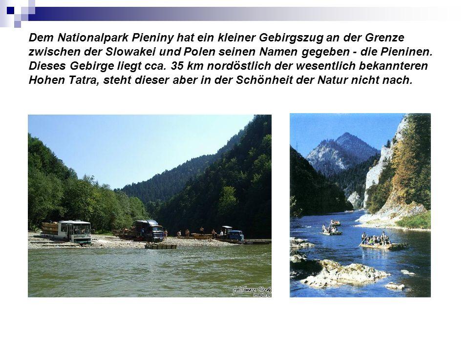 Dem Nationalpark Pieniny hat ein kleiner Gebirgszug an der Grenze zwischen der Slowakei und Polen seinen Namen gegeben - die Pieninen.