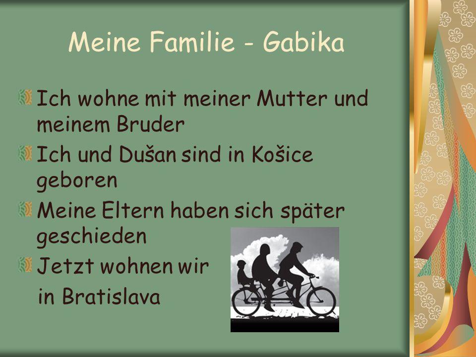 Meine Familie - Gabika Ich wohne mit meiner Mutter und meinem Bruder