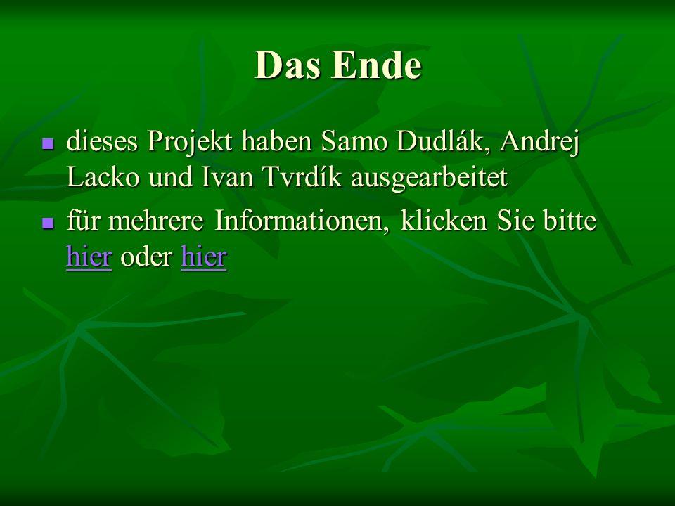 Das Ende dieses Projekt haben Samo Dudlák, Andrej Lacko und Ivan Tvrdík ausgearbeitet.