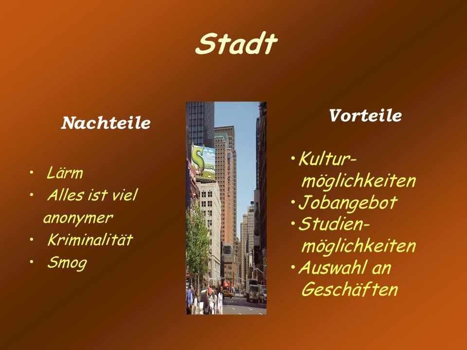 Stadt Vorteile Nachteile Kultur- möglichkeiten Jobangebot Studien-