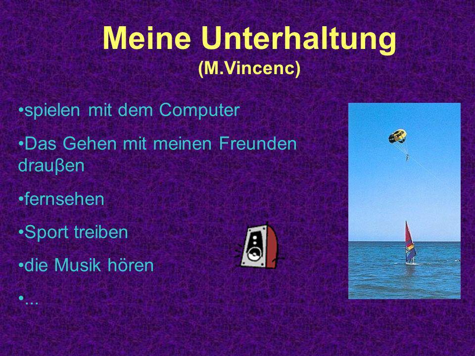 Meine Unterhaltung (M.Vincenc) spielen mit dem Computer