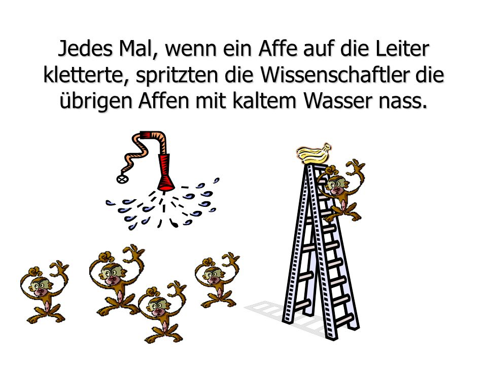 Jedes Mal, wenn ein Affe auf die Leiter kletterte, spritzten die Wissenschaftler die übrigen Affen mit kaltem Wasser nass.