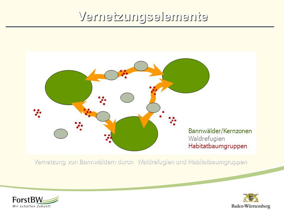 Vernetzung von Bannwäldern durch Waldrefugien und Habitatbaumgruppen