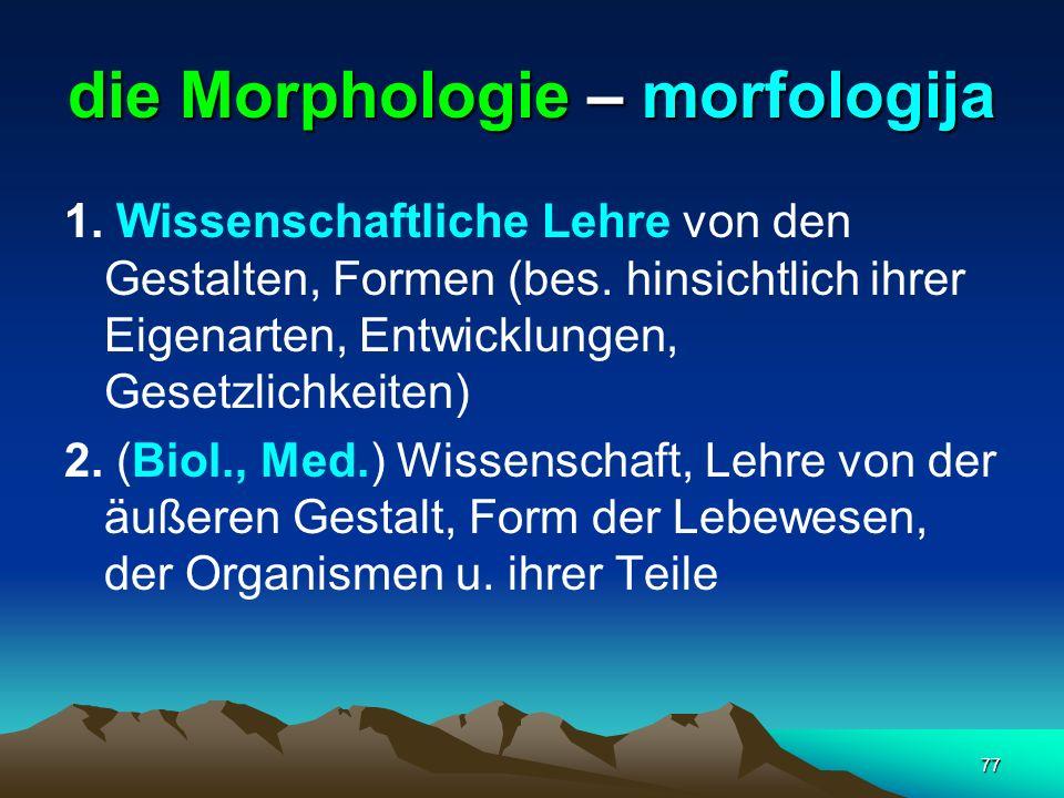 die Morphologie – morfologija