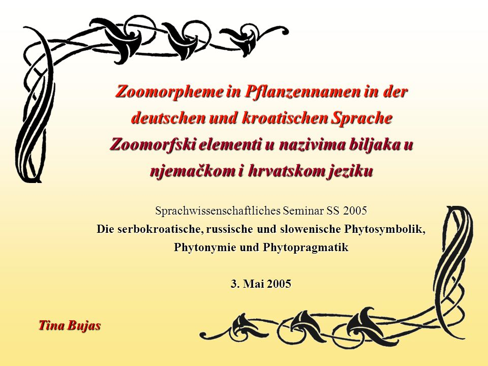 Zoomorpheme in Pflanzennamen in der deutschen und kroatischen Sprache Zoomorfski elementi u nazivima biljaka u njemačkom i hrvatskom jeziku Sprachwissenschaftliches Seminar SS 2005 Die serbokroatische, russische und slowenische Phytosymbolik, Phytonymie und Phytopragmatik 3. Mai 2005