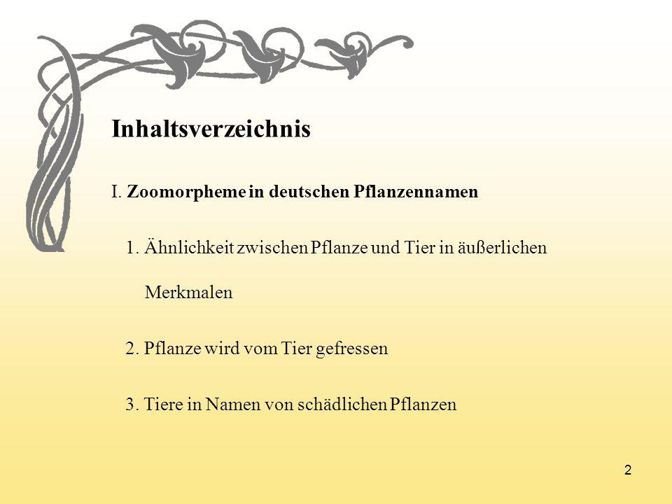 Inhaltsverzeichnis I. Zoomorpheme in deutschen Pflanzennamen