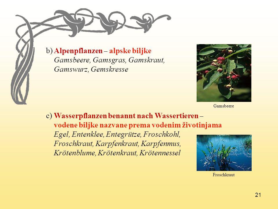 b) Alpenpflanzen – alpske biljke Gamsbeere, Gamsgras, Gamskraut,