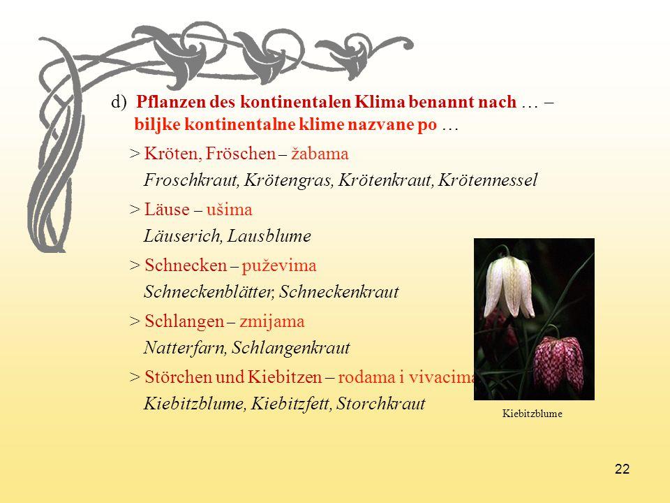 d) Pflanzen des kontinentalen Klima benannt nach … –