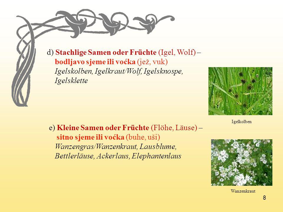 d) Stachlige Samen oder Früchte (Igel, Wolf) –