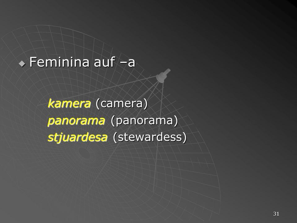 Feminina auf –a kamera (camera) panorama (panorama)
