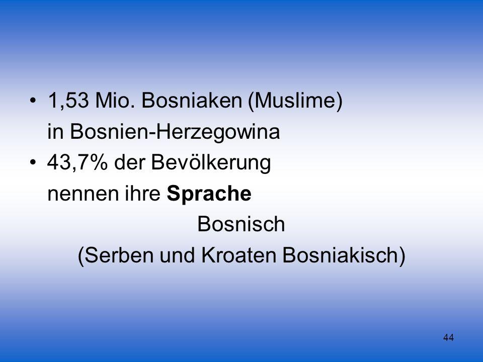 (Serben und Kroaten Bosniakisch)