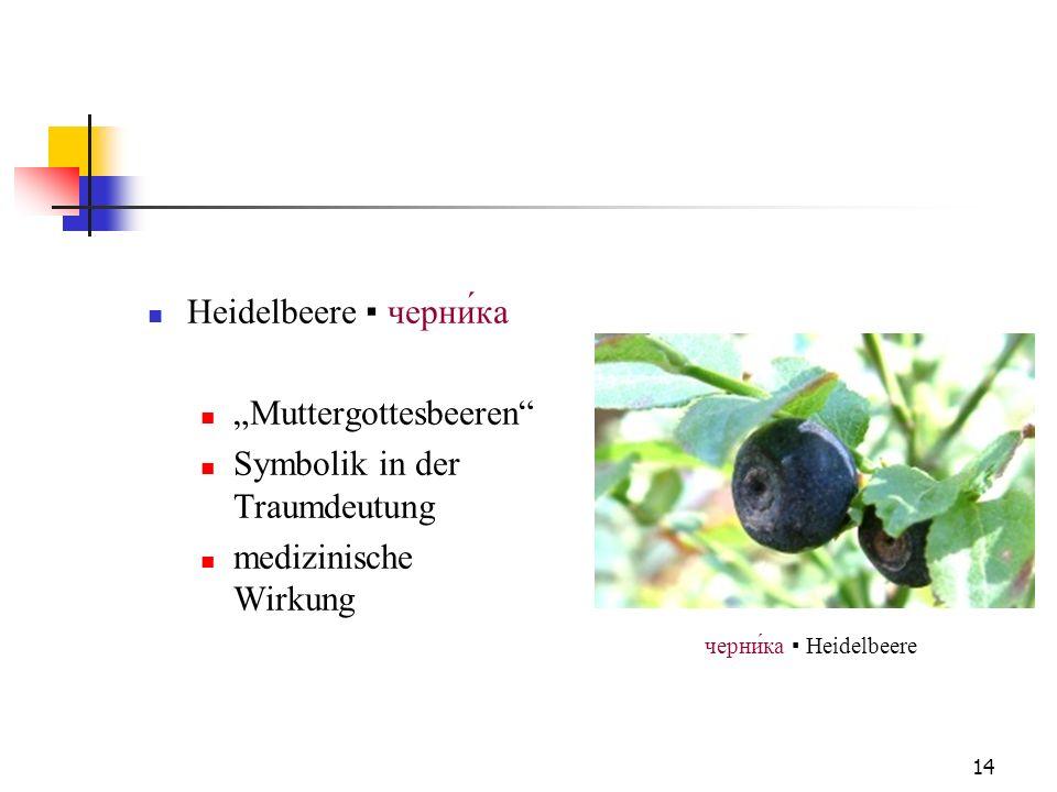 черни́ка ▪ Heidelbeere
