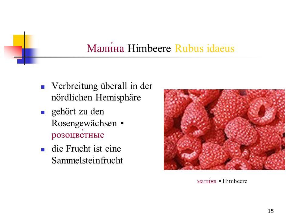 Mали́на Himbeere Rubus idaeus