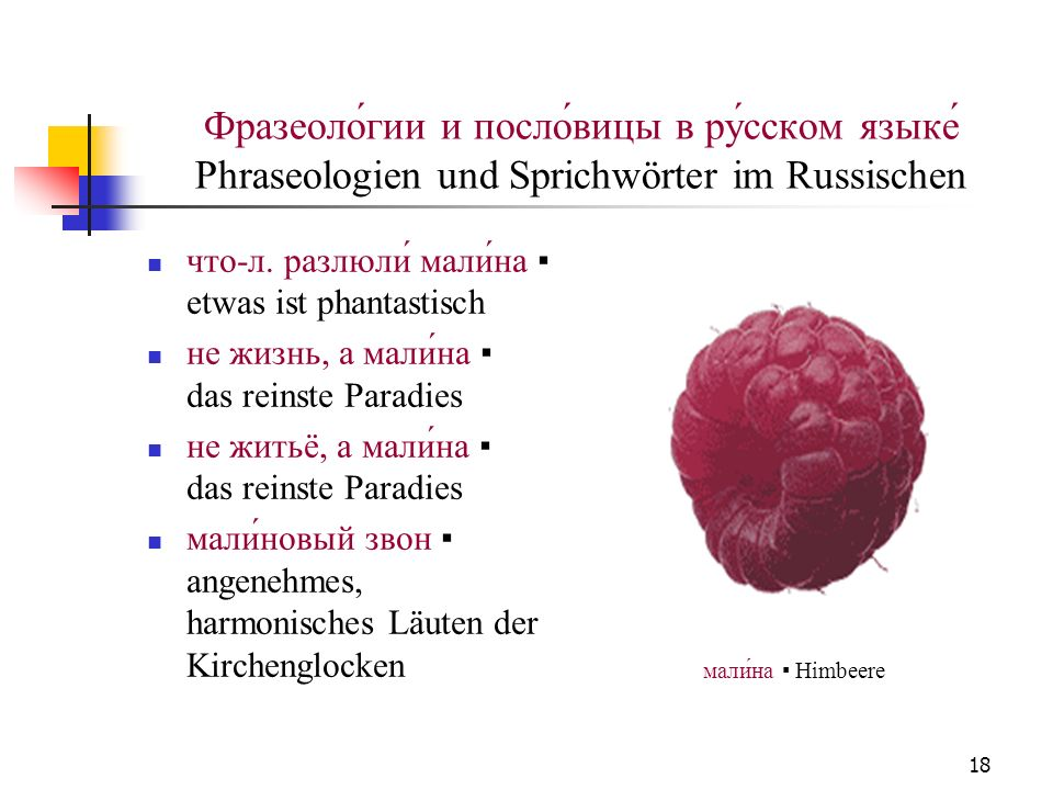 Фразеоло́гии и посло́вицы в ру́сском языке́ Phraseologien und Sprichwörter im Russischen